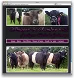 Whitepool Belted Galloways