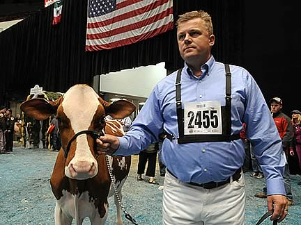 USA Judge for Emerald Expo 2013 Dairy Show